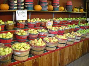 Farm store, apples and ciders, pies, caramel and candied apples, jams and jellies, bread, fritters,