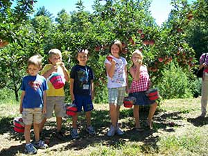 Pick Your Own apples at the Apple Barn